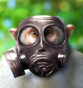φυσικό-αέριο-3